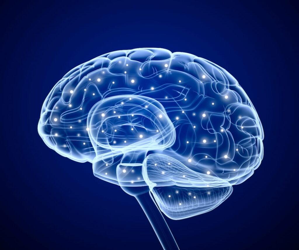 brain impulses digital illustration
