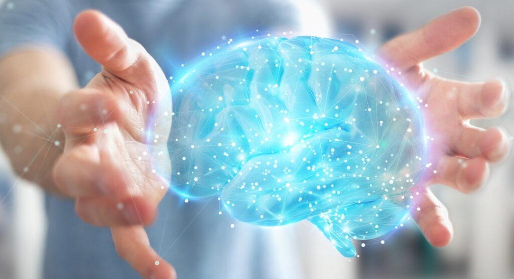 virtual 3D model of human brain between person's hands